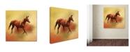 "Trademark Global Jai Johnson 'A Dash Of Chestnut Mare' Canvas Art - 24"" x 24"" x 2"""
