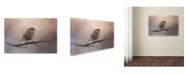 "Trademark Global Jai Johnson 'House Finch In January' Canvas Art - 19"" x 12"" x 2"""