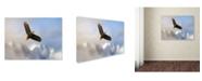"Trademark Global Jai Johnson 'Rise Above Bald Eagle' Canvas Art - 32"" x 24"" x 2"""