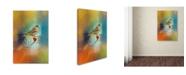 "Trademark Global Jai Johnson 'Many Colors' Canvas Art - 19"" x 12"" x 2"""