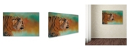 "Trademark Global Jai Johnson 'Bengal Energy' Canvas Art - 47"" x 30"" x 2"""