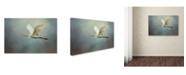 "Trademark Global Jai Johnson 'Sea Flight' Canvas Art - 47"" x 30"" x 2"""