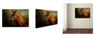 """Trademark Global Jai Johnson 'Standing Strong' Canvas Art - 47"""" x 30"""" x 2"""""""