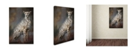 "Trademark Global Jai Johnson 'Patience' Canvas Art - 19"" x 12"" x 2"""