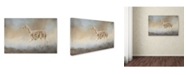 "Trademark Global Jai Johnson 'Seeking' Canvas Art - 19"" x 12"" x 2"""