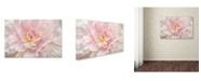 "Trademark Global Cora Niele 'Pink Peony' Canvas Art - 32"" x 22"" x 2"""