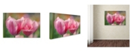 "Trademark Global Cora Niele 'Tulip Flower Pink Mirella' Canvas Art - 24"" x 16"" x 2"""