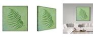 "Trademark Global Cora Niele 'Fern Series Vintage I' Canvas Art - 35"" x 35"" x 2"""