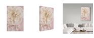"Trademark Global Cora Niele 'Rose Gold' Canvas Art - 47"" x 30"" x 2"""