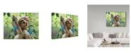 "Trademark Global Howard Robinson 'Happy Sloth' Canvas Art - 19"" x 14"" x 2"""