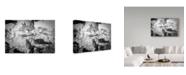 """Trademark Global Ido Meirovich 'Chaos' Canvas Art - 19"""" x 2"""" x 12"""""""
