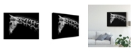 "Trademark Global David Williams 'Calf' Canvas Art - 24"" x 2"" x 18"""