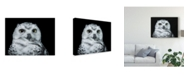 "Trademark Global David Williams 'Young White Owl' Canvas Art - 32"" x 2"" x 24"""