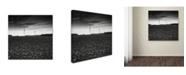 "Trademark Global Dave MacVicar 'Wind' Canvas Art - 35"" x 35"" x 2"""