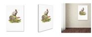 "Trademark Global The Macneil Studio 'Wild Rabbit' Canvas Art - 19"" x 12"" x 2"""