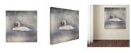 "Trademark Global Jai Johnson 'Swan Storm' Canvas Art - 24"" x 24"" x 2"""