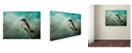 "Trademark Global Jai Johnson 'Wishing' Canvas Art - 24"" x 18"" x 2"""