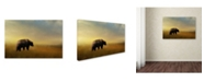 "Trademark Global Jai Johnson 'Where The Grizzly Roams' Canvas Art - 47"" x 30"" x 2"""