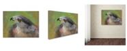 """Trademark Global Jai Johnson 'The Sharp Shinned Hawk' Canvas Art - 24"""" x 18"""" x 2"""""""
