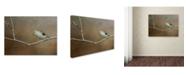 "Trademark Global Jai Johnson 'Visiting Tufted Titmouse' Canvas Art - 32"" x 24"" x 2"""