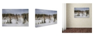 "Trademark Global Jai Johnson 'Winter Impressions In Colorado 8' Canvas Art - 32"" x 22"" x 2"""