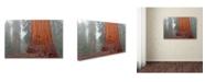 "Trademark Global Mike Jones Photo 'Kings Canyon' Canvas Art - 19"" x 12"" x 2"""