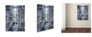 """Trademark Global Moises Levy 'Vasconcelos 2' Canvas Art - 47"""" x 35"""" x 2"""""""