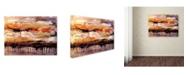 "Trademark Global Natasha Wescoat 'Soar' Canvas Art - 32"" x 24"" x 2"""