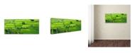 "Trademark Global Robert Harding Picture Library 'Farmland 101' Canvas Art - 10"" x 24"" x 2"""