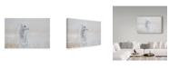 """Trademark Global Roelof De Hoog 'Looking Around' Canvas Art - 32"""" x 22"""" x 2"""""""