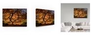 "Trademark Global Moises Levy 'The Tree' Canvas Art - 32"" x 24"" x 2"""