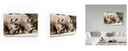 "Trademark Global Robert Michaud 'Rhino' Canvas Art - 24"" x 16"" x 2"""