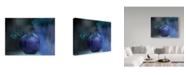 "Trademark Global Natalia Baras 'Blue Apple' Canvas Art - 32"" x 2"" x 24"""
