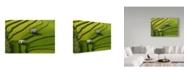 "Trademark Global Sarawut Intarob 'Two Home' Canvas Art - 32"" x 2"" x 22"""