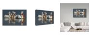 """Trademark Global Xavier Ortega 'Dalmatian Pelicans Close Up' Canvas Art - 19"""" x 2"""" x 12"""""""