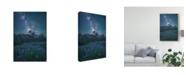 "Trademark Global Steve Schwindt 'Milky Way Above Mt Jefferson' Canvas Art - 16"" x 2"" x 24"""