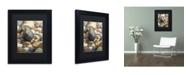 "Trademark Global Stephen Stavast 'A Bolder View' Matted Framed Art - 11"" x 14"" x 0.5"""