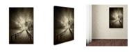 "Trademark Global David Senechal 'Stairs To The Sanctuary' Canvas Art - 32"" x 22"" x 2"""