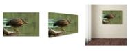 "Trademark Global Darlene Hewson 'Wading Into The Unknown' Canvas Art - 19"" x 12"" x 2"""