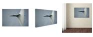"Trademark Global Darek Siusta 'Cone' Canvas Art - 47"" x 30"" x 2"""