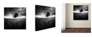 "Trademark Global Sebastien Del Grosso 'Illusion Dun Printemps Perdu' Canvas Art - 24"" x 24"" x 2"""