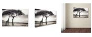 """Trademark Global Piet Flour 'Under The African Sun' Canvas Art - 32"""" x 22"""" x 2"""""""