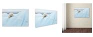 "Trademark Global Joan Gil Raga 'Polar Bear Grooming' Canvas Art - 19"" x 12"" x 2"""