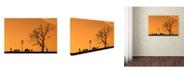 "Trademark Global Dan Mirica 'Moments' Canvas Art - 47"" x 30"" x 2"""