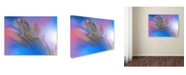"Trademark Global Juliana Nan 'Touch Me Softly' Canvas Art - 32"" x 24"" x 2"""