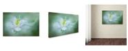 """Trademark Global Jacky Parker 'Mystical' Canvas Art - 32"""" x 22"""" x 2"""""""