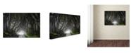 "Trademark Global Nicola Molteni 'Dark Hedges' Canvas Art - 32"" x 22"" x 2"""