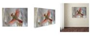 "Trademark Global Mircea Costina 'Snow Storm' Canvas Art - 32"" x 24"" x 2"""