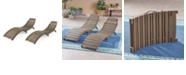 Noble House Lahaina Outdoor Chaise Lounge (Set of 2)