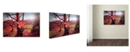 "Trademark Global Mark Ashkenazi 'Img 0298' Canvas Art - 12"" x 19"""